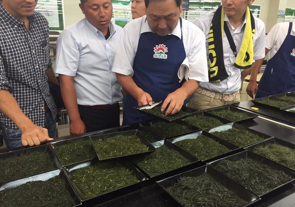 Kagoshima Governor Green Tea Contest 2017