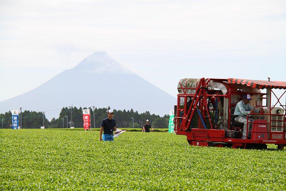 Compétition annuelle des machines de récolte de Chiran