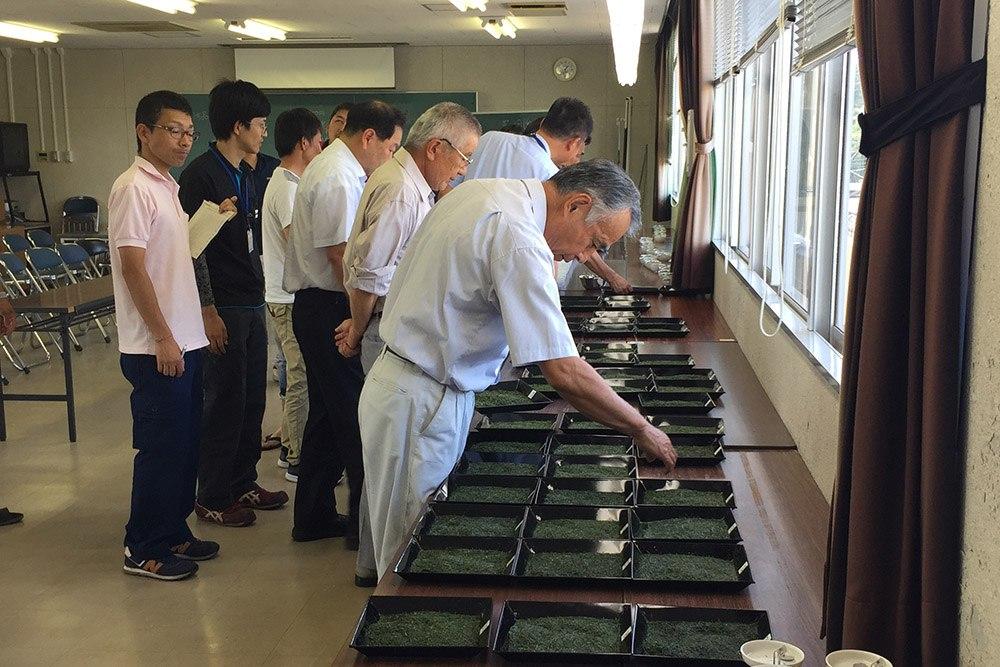 「知覧茶」のレベル向上へ、小売茶規格統一審査会を開催!