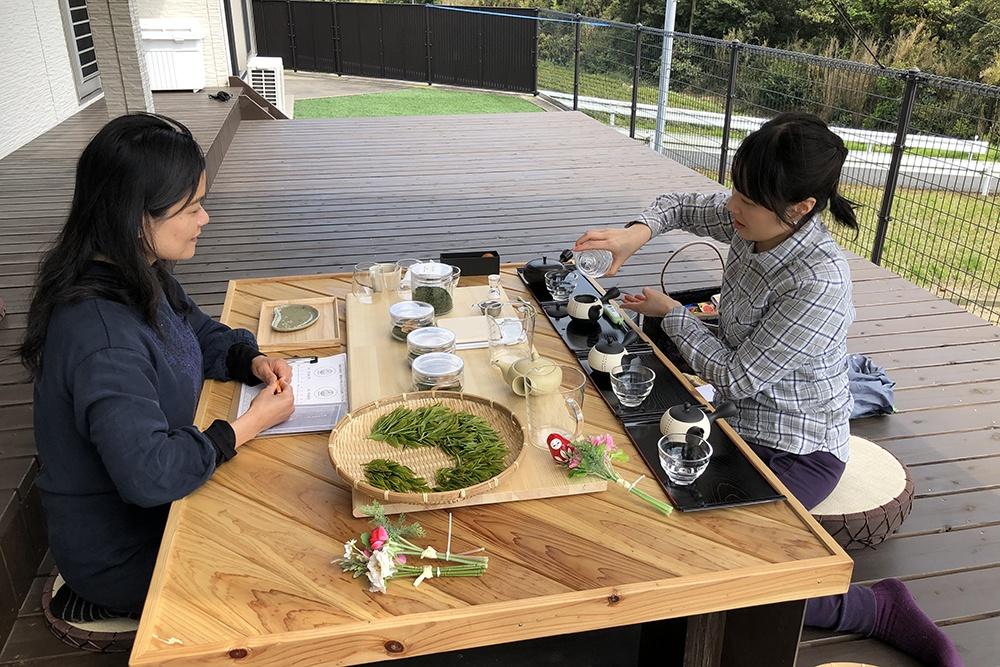 Programme d'initiation au thé vert