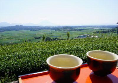 Chiran-tea-event_2020_1